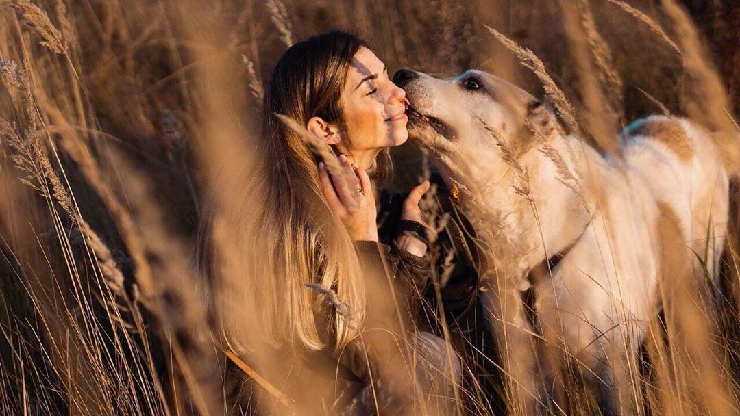 Работа с собакой и девушкой веб девушка модель екатеринбург работа