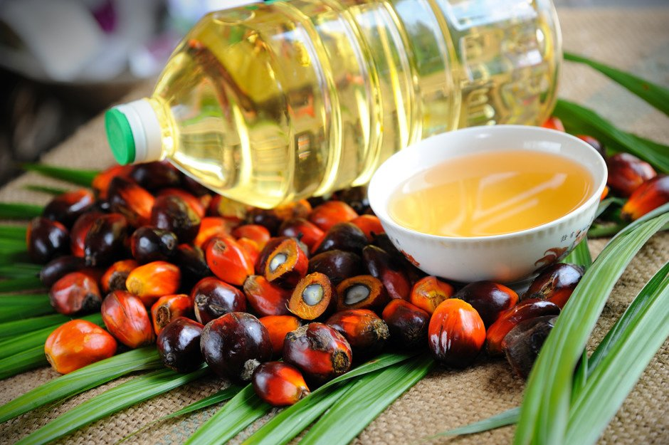 Фото продукта масло пальмовое