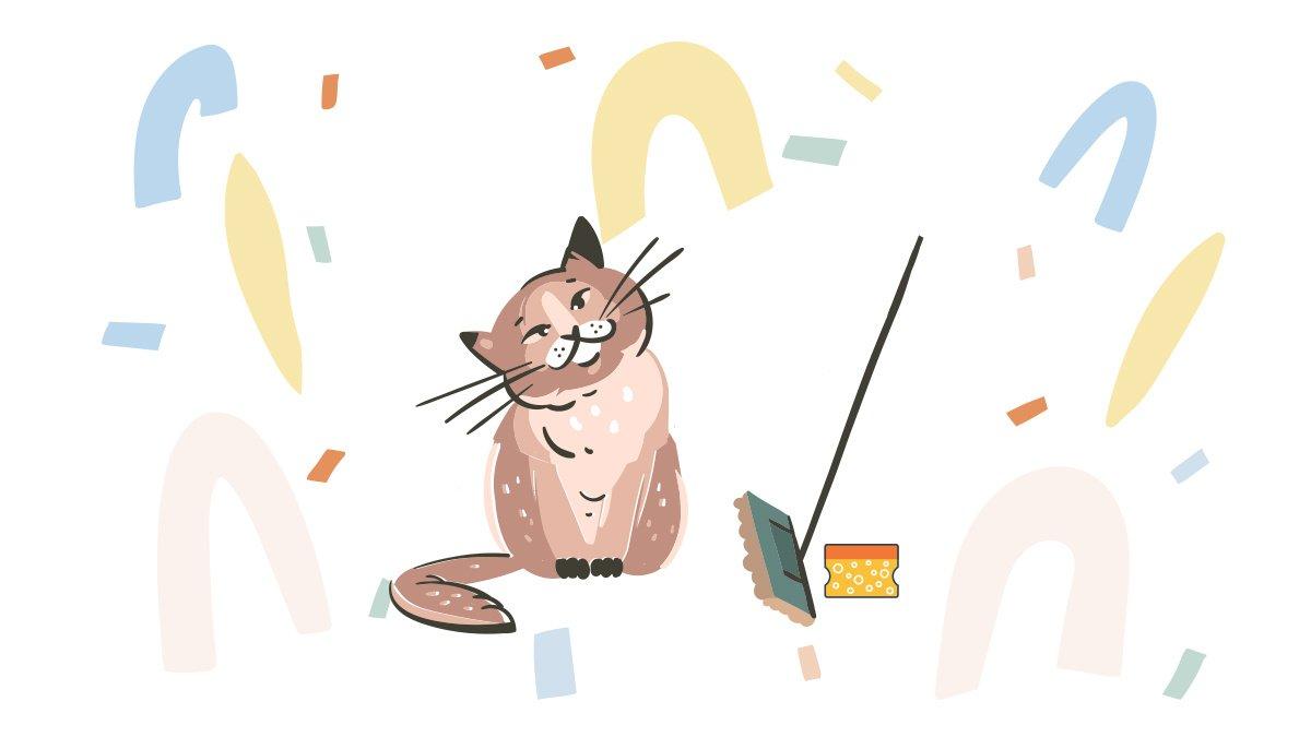Кошки и губки