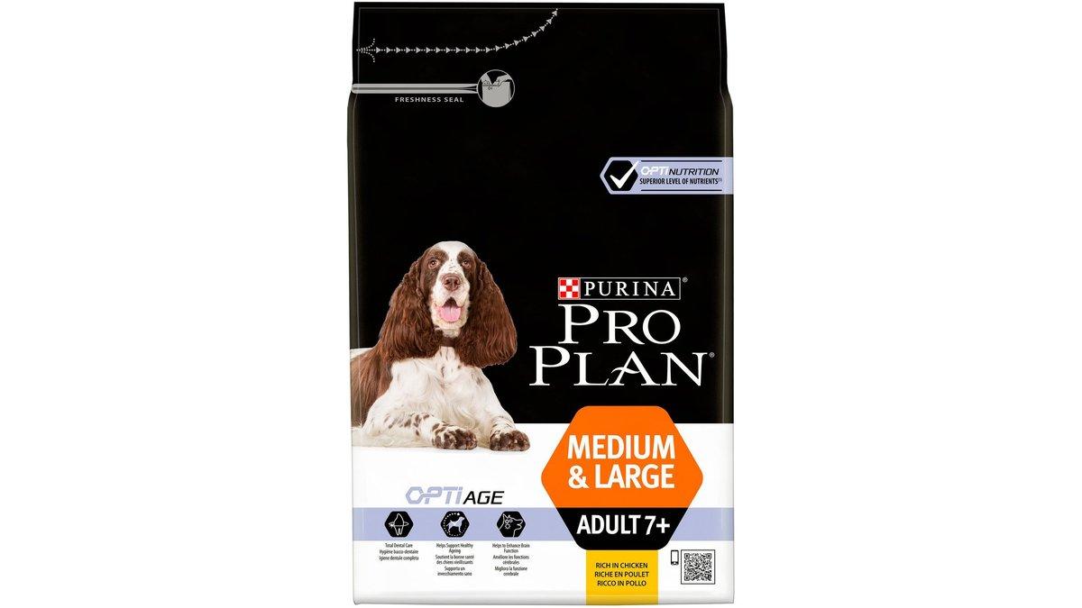 Про план для взрослых собак